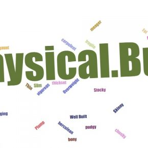 Words that describe Physical Build